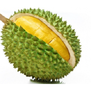 Fresh Durian Musang King